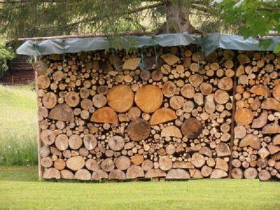 Какие дрова выбрать и почему лучше с доставкой?
